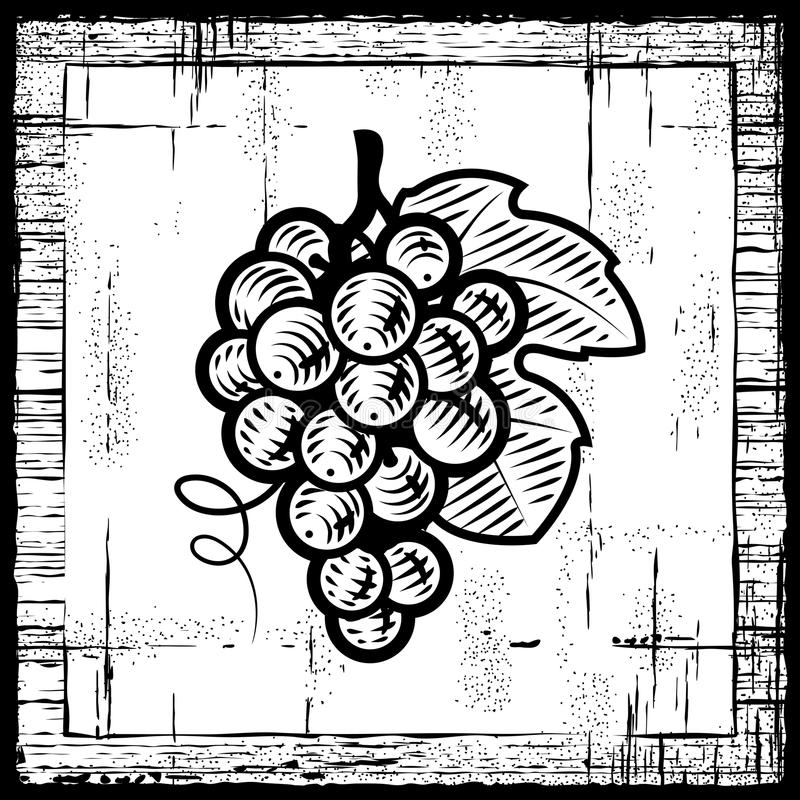 czarny wiązki winogron retro biel royalty ilustracja
