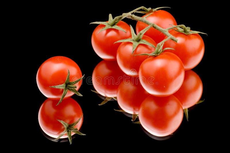 czarny zamknięty dojrzały pomidor dojrzały zdjęcia stock