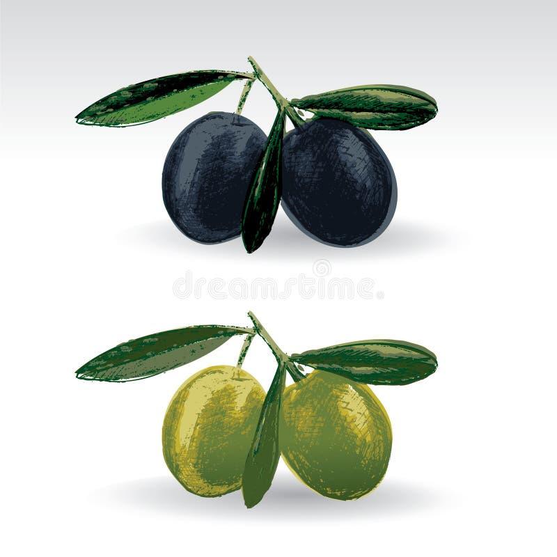 czarny zielone oliwki ilustracja wektor