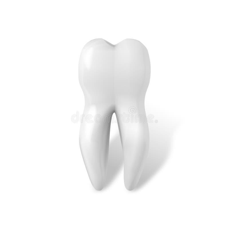 czarny zmiany ikony po prostu zębu wektorowy biel Realistyczni zęby Odizolowywający na Białym tle ilustracji
