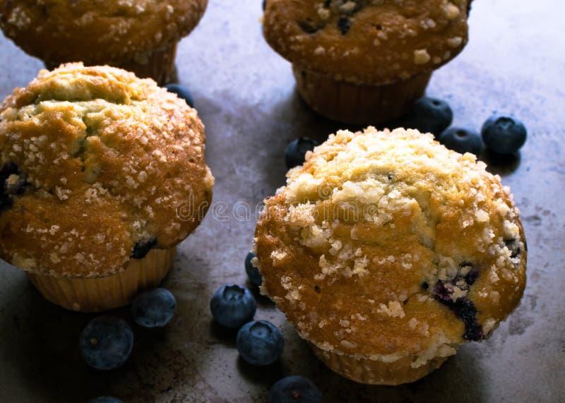 Czarnych jagod muffins z świeżą owoc fotografia stock