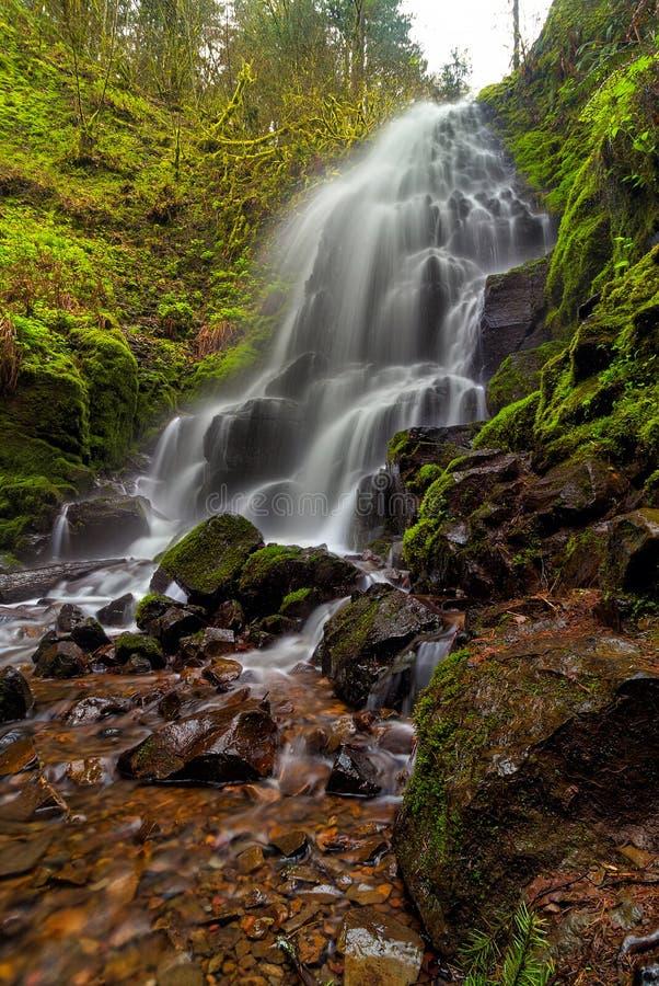 Czarodziejka Spada w Kolumbia wąwozie Oregon zdjęcie stock