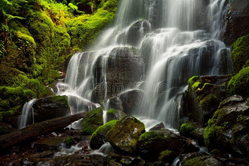 Czarodziejka Spada wzdłuż Kolumbia wąwozu, Oregon zdjęcie stock