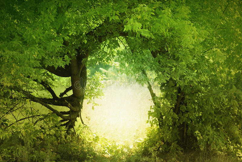 czarodziejki drzwiowa ziemia obraz royalty free