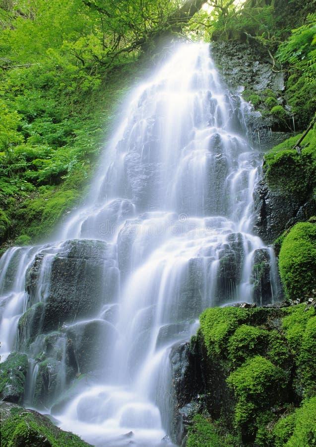 Czarodziejscy Falls Obrazy Stock