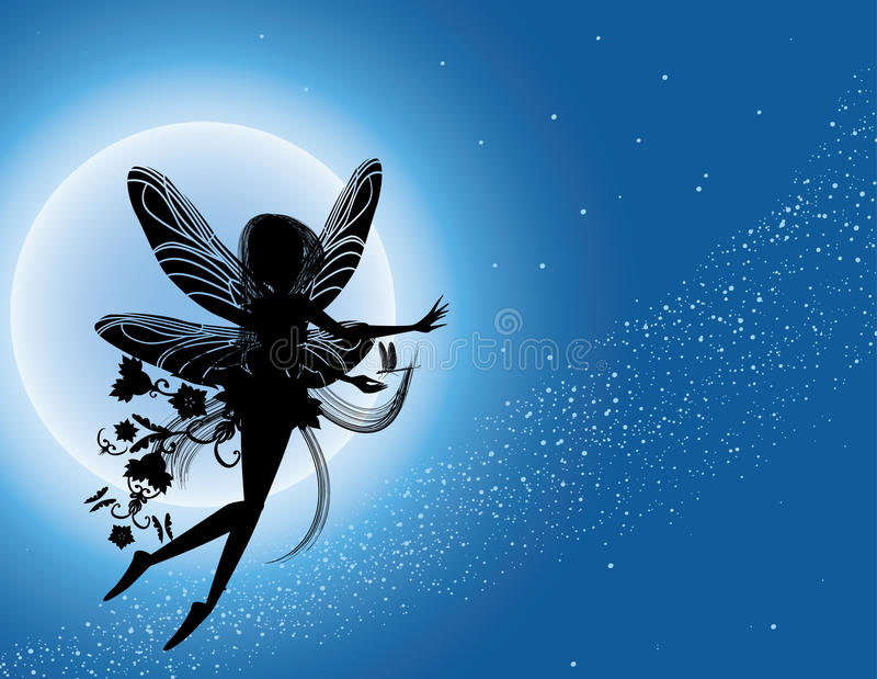 Czarodziejski latający noc sylwetki niebo