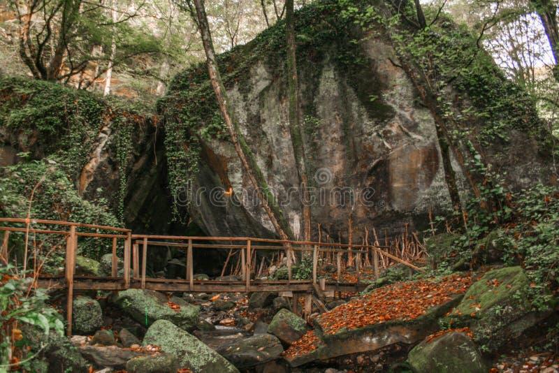 Czarodziejski tajemniczy krajobrazowy drewniany most na tle skały ` Dwa braci ` obraz royalty free
