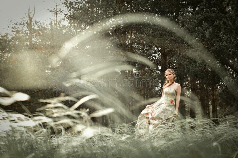 czarodziejskiego lasu kobieta fotografia royalty free