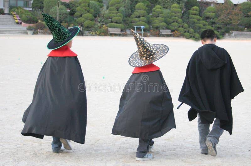 czarownice obrazy royalty free