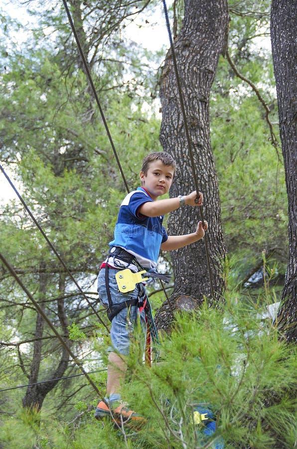 Czas wolny i aktywność na naturze Mały chłopiec obwieszenie, odprowadzenie i fotografia royalty free