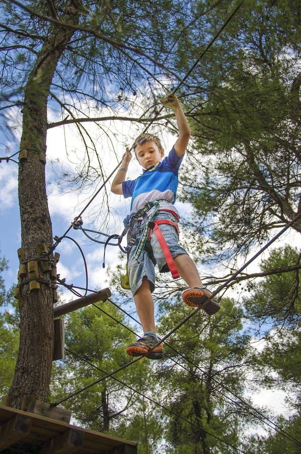 Czas wolny i aktywność na naturze Mały chłopiec obwieszenie, odprowadzenie i obraz royalty free