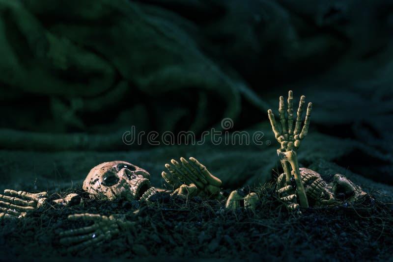 Czaszka i kościec na zmielonym suchej ziemi ciemnym tle, pojęć brzęczenia fotografia stock