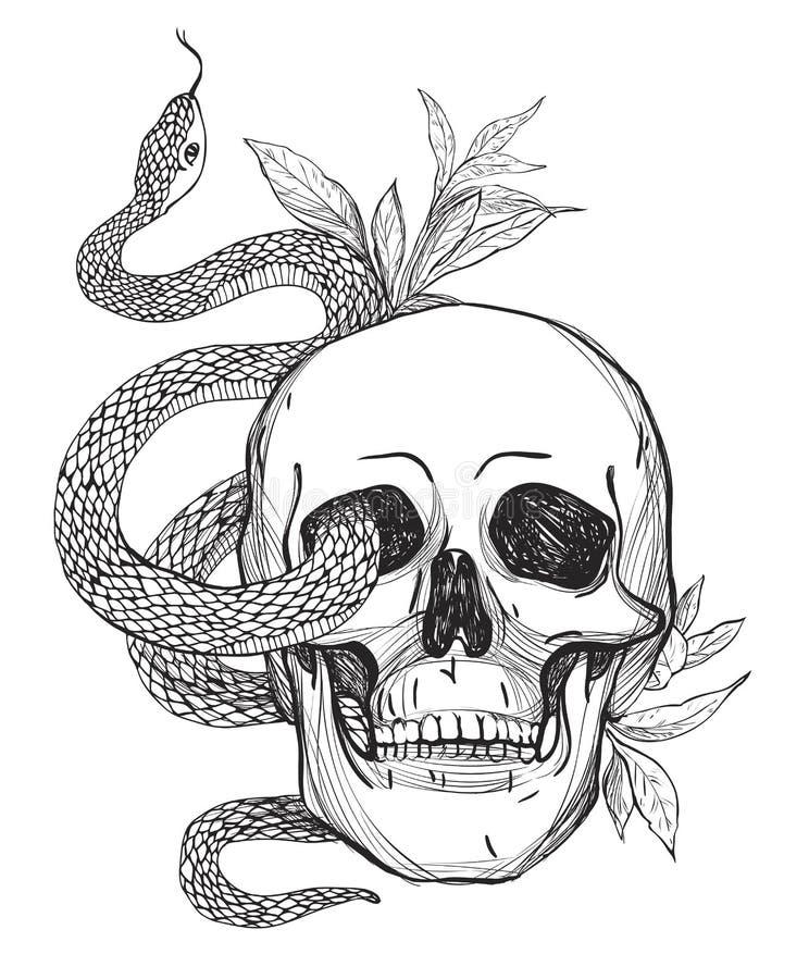 Czaszka i wąż Rocznika wektoru ilustracja royalty ilustracja