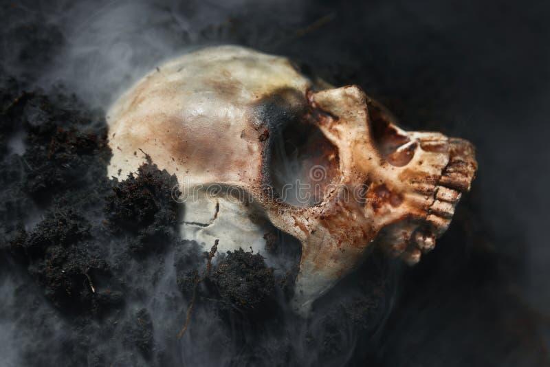 Czaszka martwego człowieka na ziemi obraz royalty free