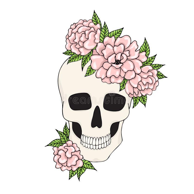 Czaszka z menchiami kwitnie na białym tle royalty ilustracja