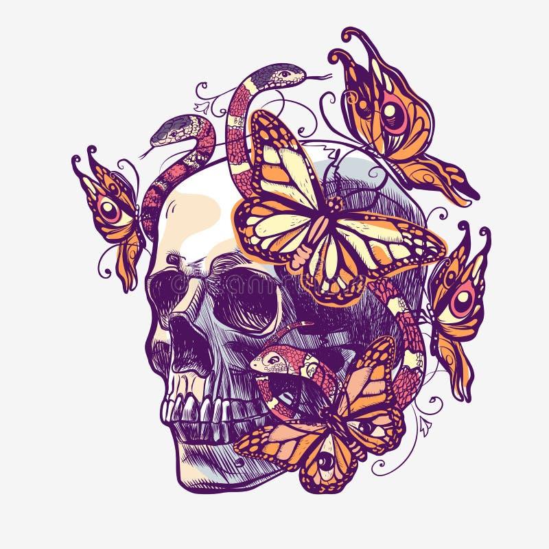 Czaszka z wzorami, butterflys i wężami, Wektorowa colour ilustracja ilustracji