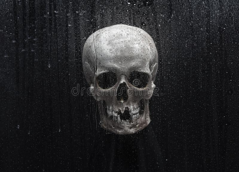 Czaszka za szkłem z kroplami wody zdjęcie stock