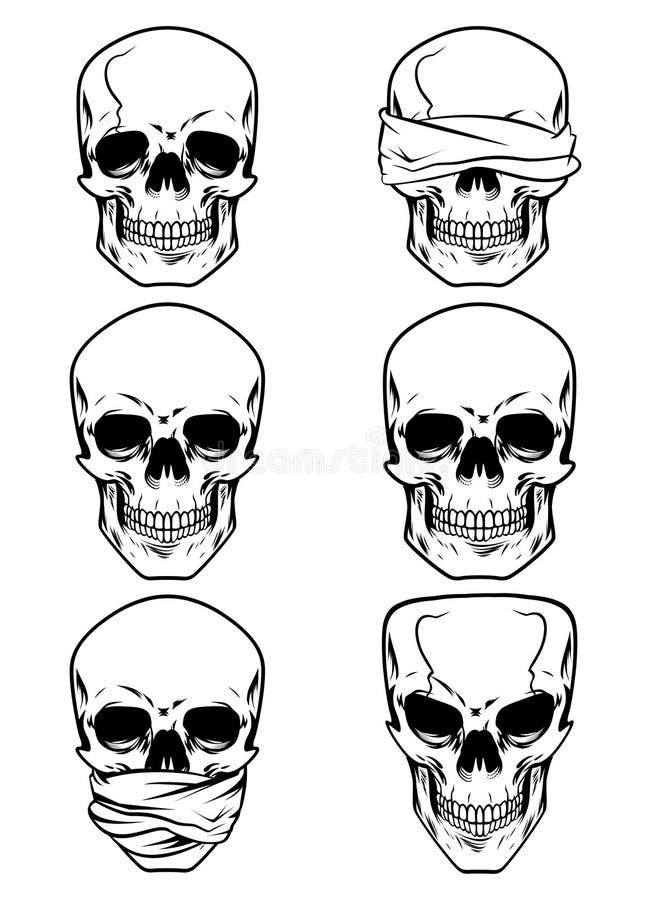 Czaszki czaszki czaszki głowa zdjęcie stock