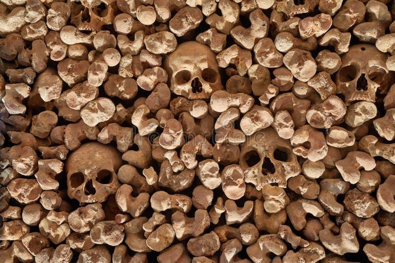 Czaszki i kości w ścianie obraz stock
