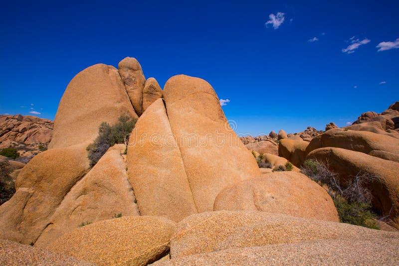 Czaszki skała w Joshua drzewa parka narodowego Mohave Kalifornia fotografia stock