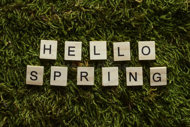 Cześć wiosna pisać z drewnianymi listami cubed kształtuje na zielonej trawie zdjęcie royalty free