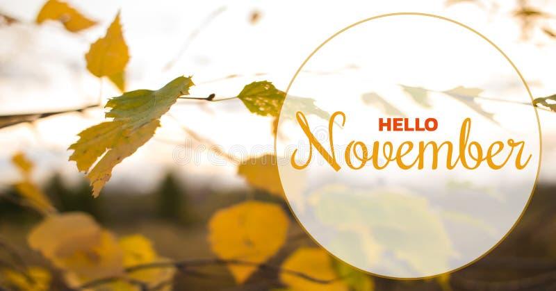 Cześć Listopad jesieni skład Koloru żółtego i pomarańcze liście na nieba tle fotografia royalty free