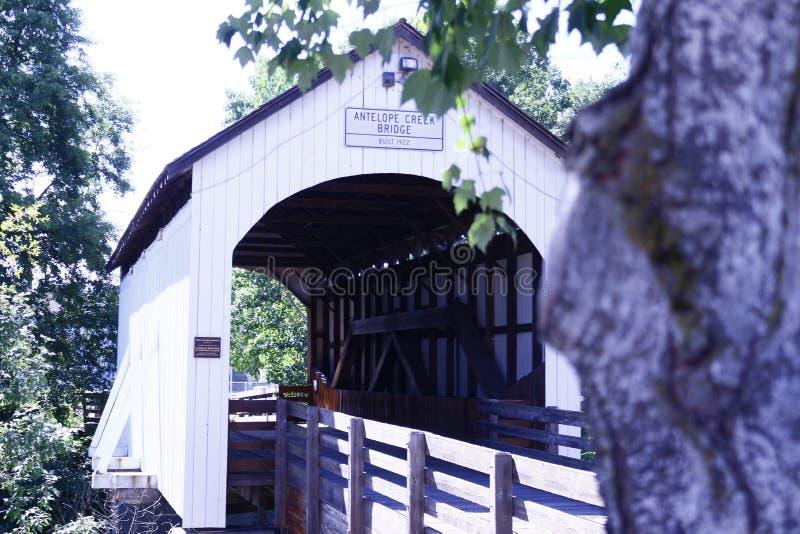 Cześć mostu drzewa zatoczka cześć cześć zdjęcie royalty free