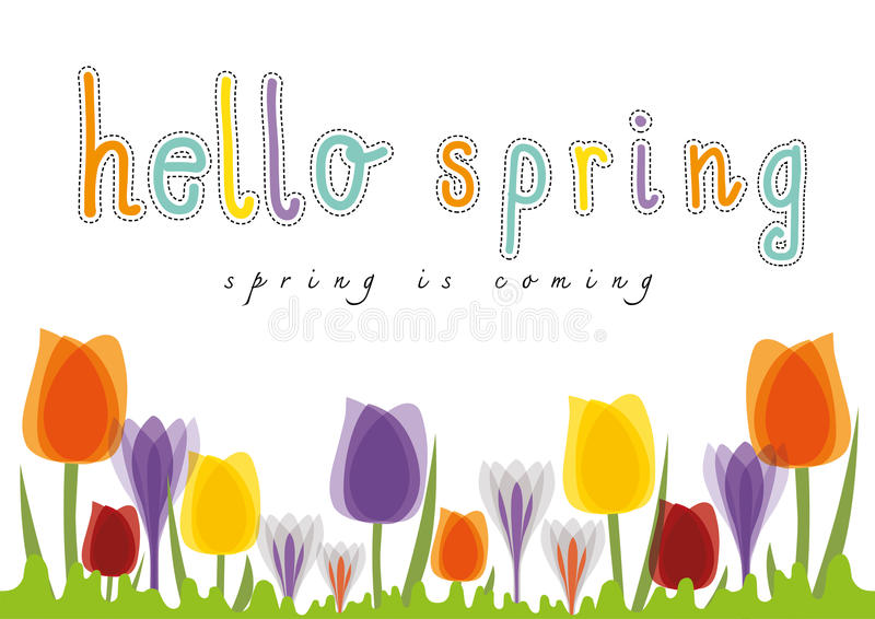 Cześć wiosna tulipan, wiosna przychodzi ilustracji