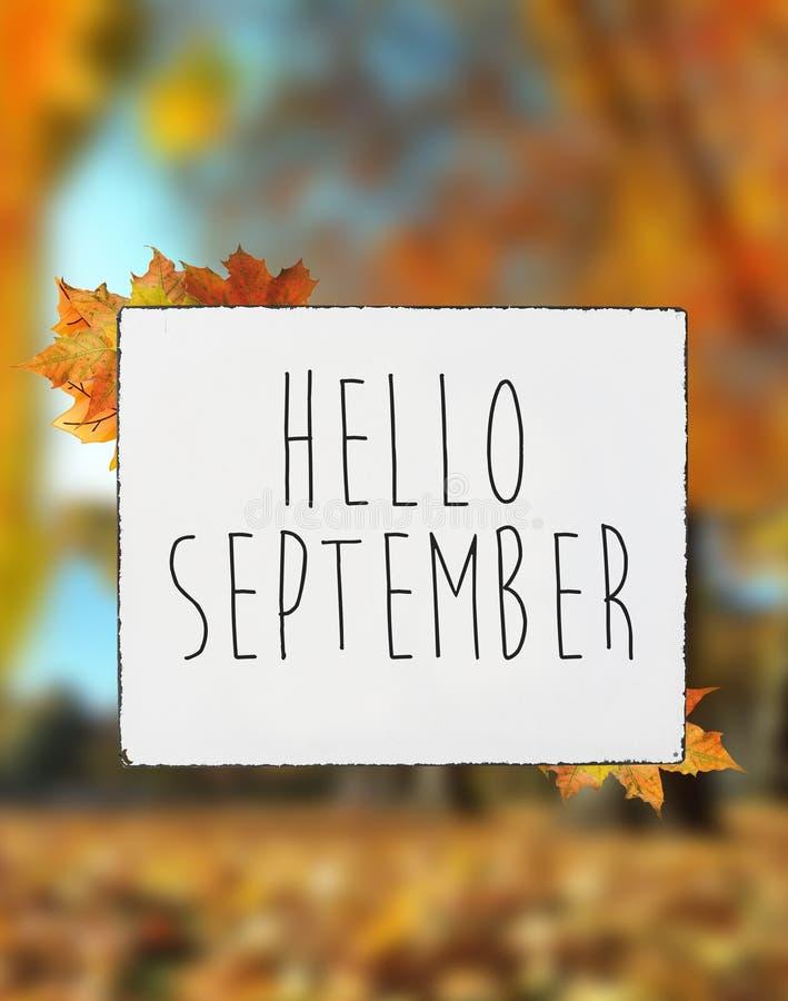 Cześć Wrzesień jesieni tekst na białym półkowej deski sztandaru spadku lea obraz stock