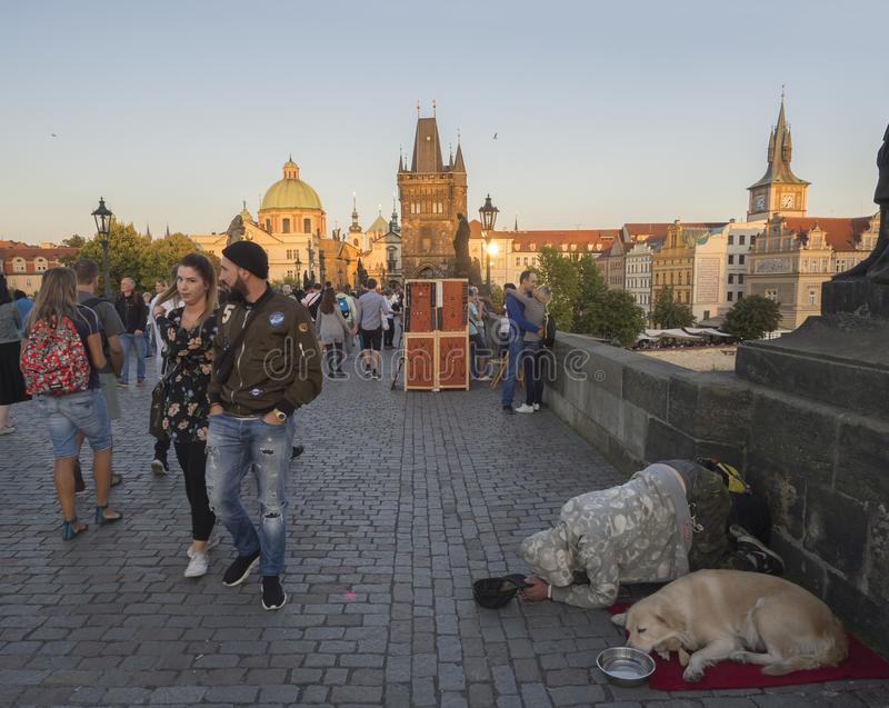 Czech Republic, Prague , September 8, 2018: Begging man with his dog kneeling on Charles Bridge on Mala Strana Bridge. Tower with walking tourist people and stock photography