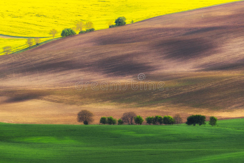 Czech Republic. South Moravia. Moravian field, plowed land,. Czech Republic. South Moravia. The picturesque nature, livestock, field stock image