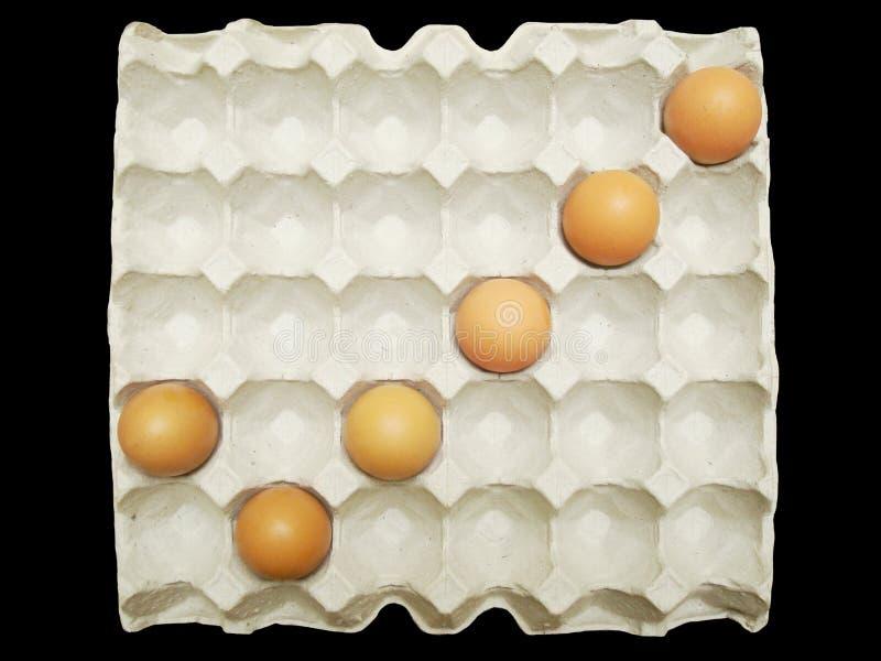 Czek ocena od jajek w papierowej tacy fotografia royalty free