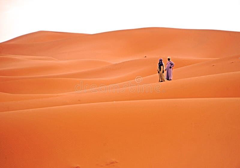 Czekać świt w erg pustyni w Maroko zdjęcie stock