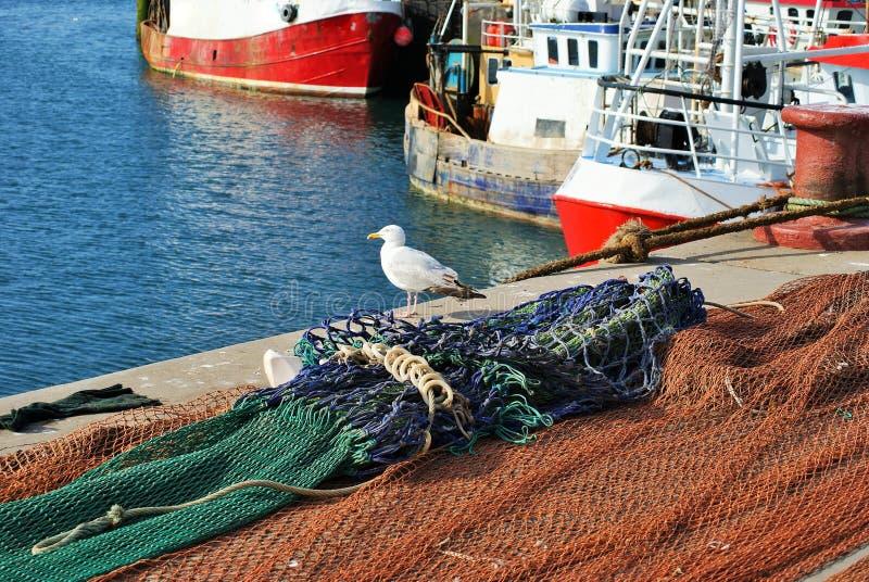Czekać na łodziach zdjęcie royalty free