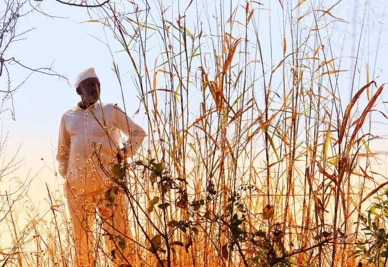 Czekanie rolnik zdjęcie royalty free