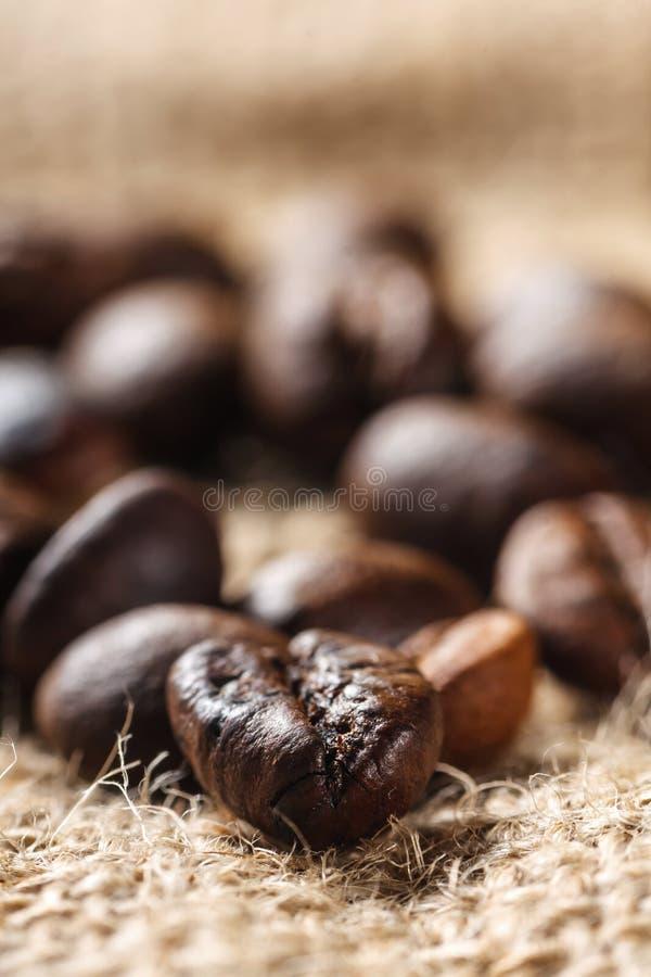 Czekoladowe i kawowe fasole, płytki dof fotografia royalty free