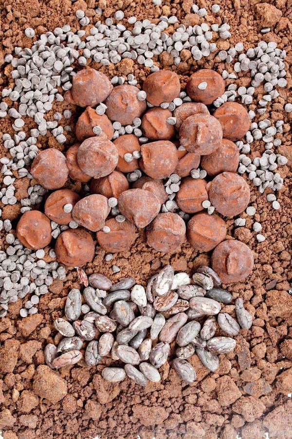 czekoladowe trufle i kakaowe fasole w kakao fotografia stock