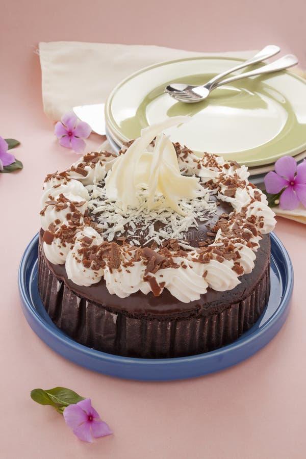 Czekoladowy Borowinowy tort zdjęcia royalty free