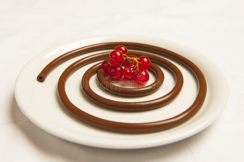 Czekoladowy spaghetti z czerwonymi jagodami zdjęcie royalty free