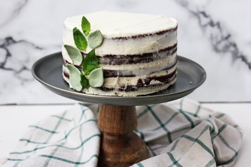 Czekoladowy tort z basil śmietanką i passionfruit syropem obrazy stock