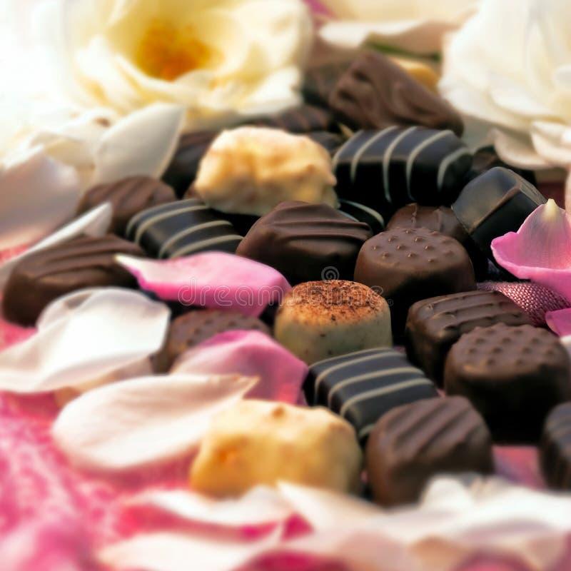 czekoladowych płatków różane trufle obraz stock
