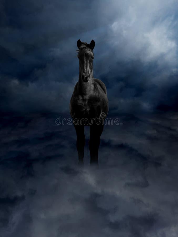 czerń chmur pagasus rumaka burza zdjęcie royalty free
