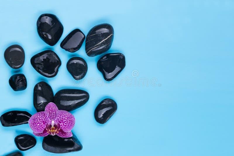 Czerń kamienie z różowym kwiatem na błękitnym tle fotografia royalty free