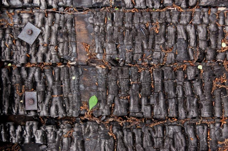 Czerń palił ścianę dom drewniane deski z embossed tekstury i metalu klamrami tło dla kopii przestrzeni pojęcie strata obrazy royalty free