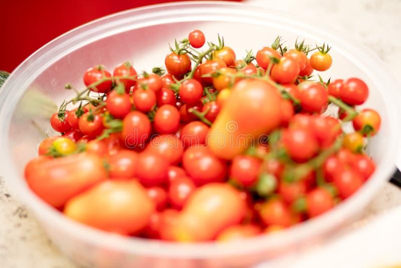 Czereśniowy pomidor na pucharze obraz stock