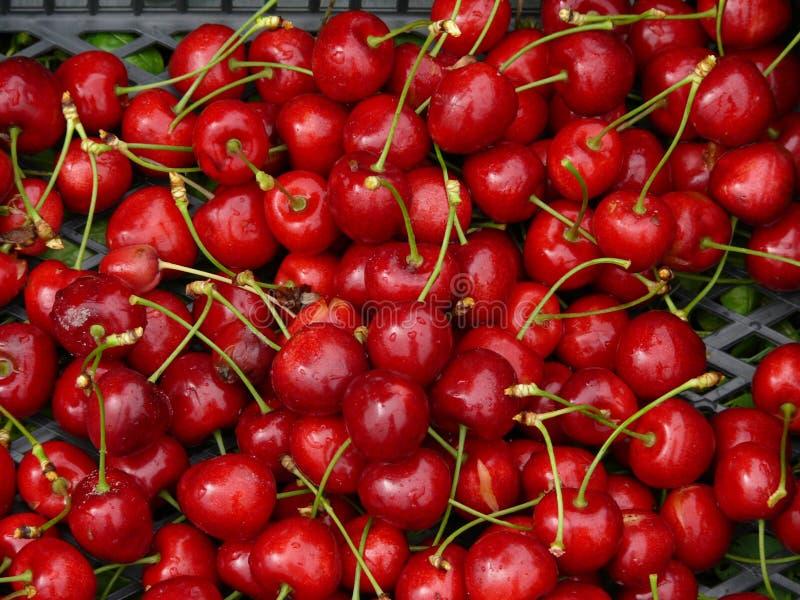 Download Czereśniowa czerwień zdjęcie stock. Obraz złożonej z owoc - 13343162