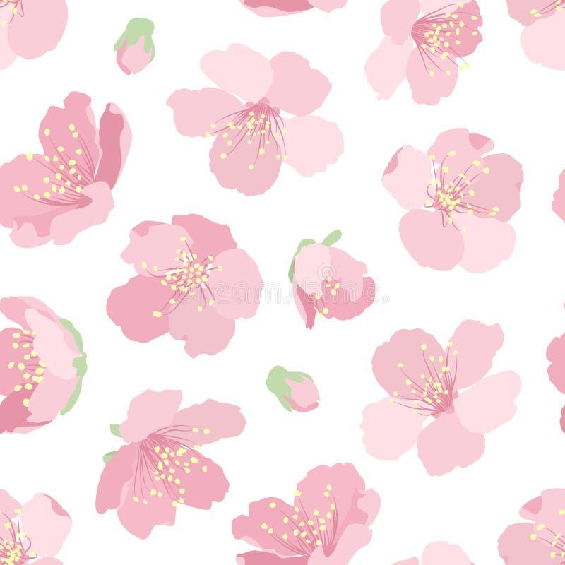 Czereśniowe Sakura menchie kwitną kwiecistego bezszwowego wzór royalty ilustracja