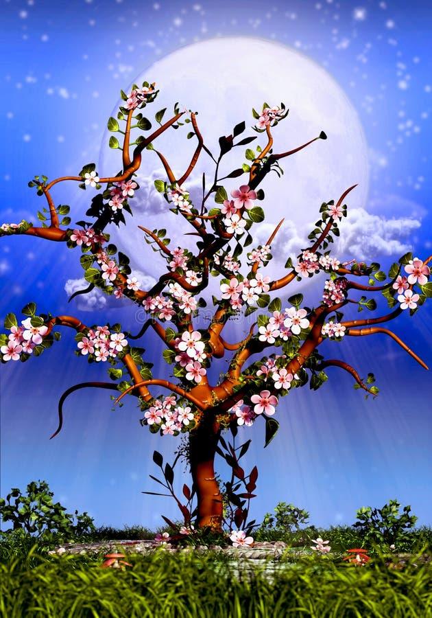 Czereśniowego drzewa okwitnięcie i gwiaździsta noc ilustracja wektor