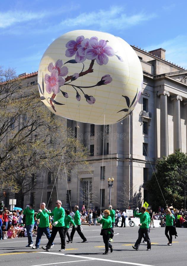 Czereśniowego okwitnięcia festiwalu parada obrazy royalty free