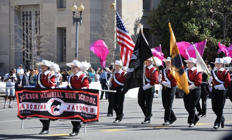 Czereśniowego okwitnięcia festiwalu parada zdjęcie royalty free